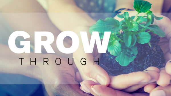 Series: Grow Through