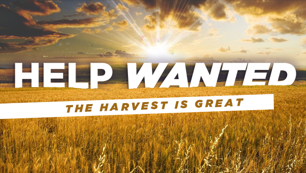 Series: Help Wanted: The Harvest is Great